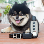 GARMIN<sup>&reg;</sup> Delta Sport™ Remote Dog Trainer with built-in BarkLimiter™